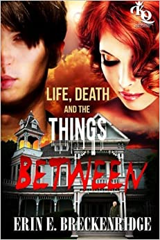Life, Death and the Things Between (Volume 1) by Erin E. Breckenridge (2015-06-18)