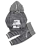 Younger star Toddler Infant Baby Boys Dinosaur Long Sleeve Hoodie Tops Sweatsuit Pants Outfit Set, Gray, 18-24Months (Tag Size 100)