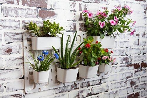 Vertibloom Living Wall Garden Starter Kit