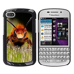 Paccase / SLIM PC / Aliminium Casa Carcasa Funda Case Cover para - Macro Bee - BlackBerry Q10