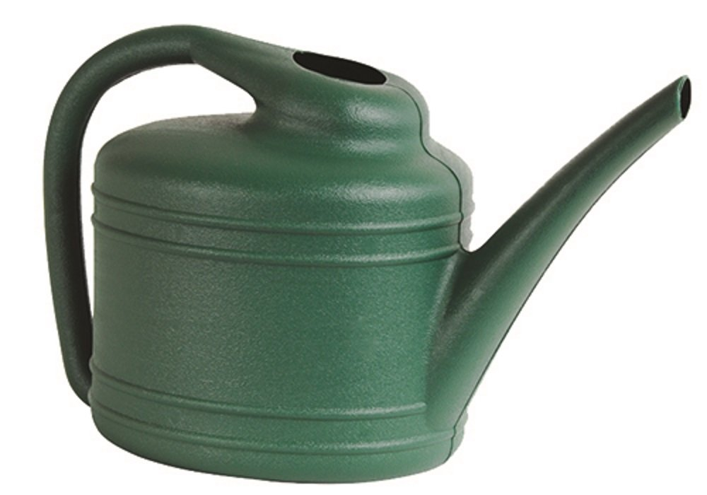 Southern Patio 1 Gallon Watering Can, Fern