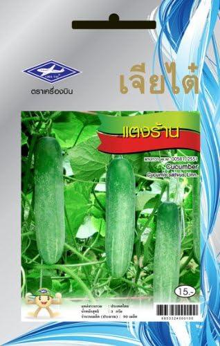 Amazon.com: Thai Long pepino – Tang LAN (90 semillas ...