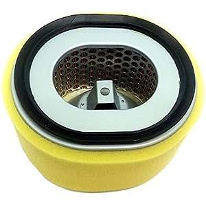 Amazon.com: Filtro de Aire para YANMAR l100 N Motor de ...