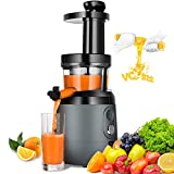 Slow Masticating Juicer Extractor, HAYKE Juicer with Quiet Motor and Brush to Clean Easily, Cold Press Vertical Juicer Machine for High Nutrient Fruits and Vagetables
