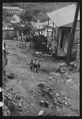 Yauco Puerto Rico - 5