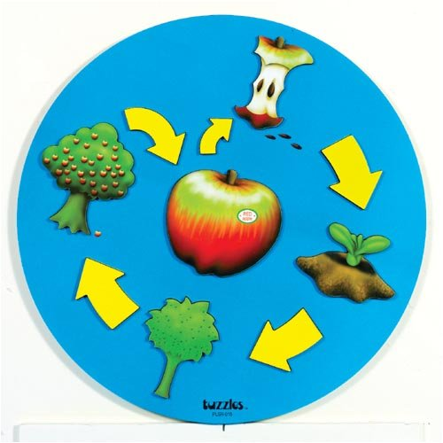 Tuzzles-Tuzzles Life Cycle of Apple Puzzle
