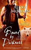 Bound by Darkness (Paladins of Darkness, Book 7)