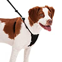 Sporn Dog Harness - No Pull and No Choke Humane Design, Non Pulling Pet Harness with Mesh Vest, Easy Step-in Adjustable Mesh Harness for Control, Patented Dog Pull Control Technology by