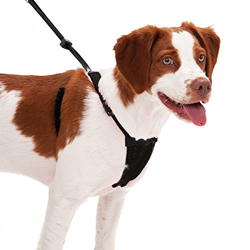 Dog Harness - No pull and No choke humane Design, Non Pulling Pet Harness with Mesh vest, Easy Step-in Adjustable Mesh Harness for control, Black, Medium by Sporn (Sports Vest Harness)