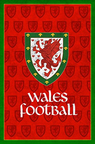 Wales Football Retro National Team Sports Mural Giant Poster 36x54 inch (Ryan Replica Jersey)
