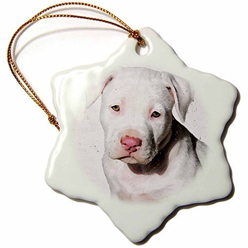 Cheyan Christmas Craft Tree Decorations American Staffordshire Terrier Pit Bull Puppy Watercolor Snowflake Christmas Ornament Porcelain Present