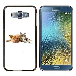 Caucho caso de Shell duro de la cubierta de accesorios de protecci¨®n BY RAYDREAMMM - Samsung Galaxy E7 E700 - Cat Dog Animales Blancos Retriever