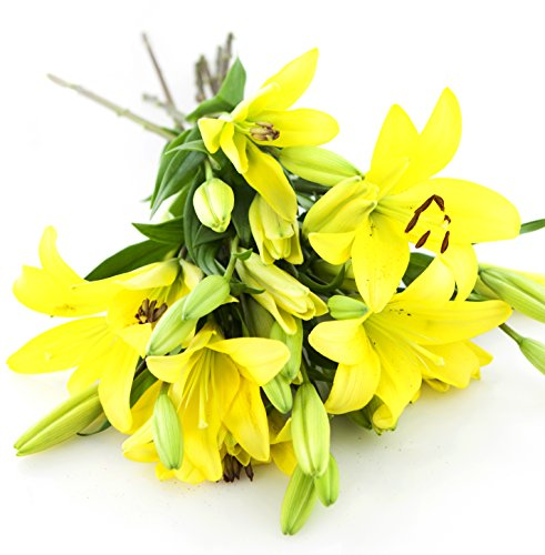 Yellow Lily Bouquet (8 Stems)