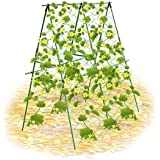 HsingsJ Garden Plant Support with Netting Trellis for Climbing Plants - Cucumber