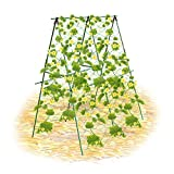 Garich Garden Plant Support with Netting Trellis for Climbing Plants - Cucumber