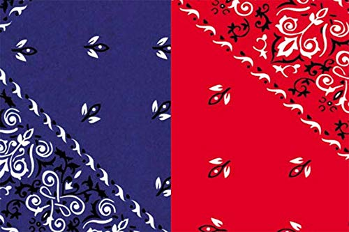 (Red & Blue Bandana Gift Wrap Tissue Paper for All Occasions. 24-Pack Includes 12 Sheets of Each Pattern. Large 20 x 30 Squares.)