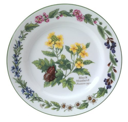 Royal Worcester Herbs Porcelain 6-Inch Bread and Butter ()