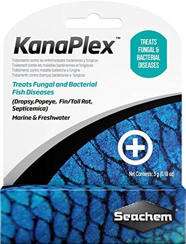 51MTYn0hmCL - Seachem KanaPlex Fungal & Bacterial Fish Disease SALTWATER /FRESHWATER Aquarium