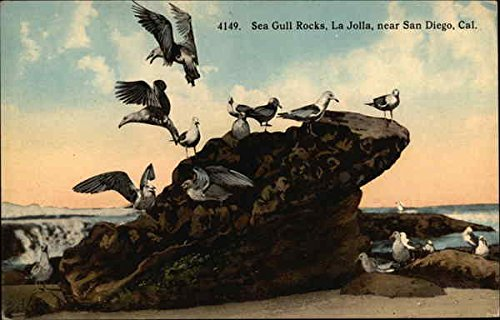 Gull Rock - Sea Gull Rocks, La Jolla San Diego, California Original Vintage Postcard