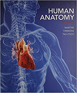 Buy Human Anatomy + PAL 3.0 Practice Anatomy Lab Book Online at Low ...