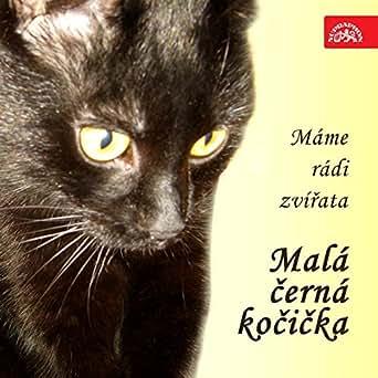 Černá kočička video.com