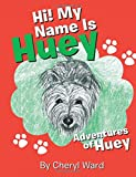 img - for Hi! My Name Is Huey: Adventures of Huey book / textbook / text book