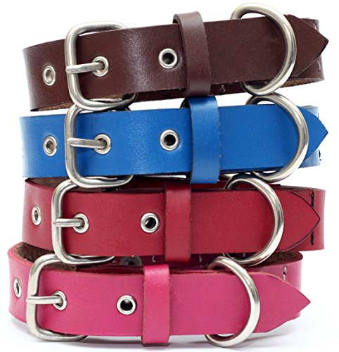 Red Dress Australia (Genuine Leather Dog Collar with Stainless Steel Buckle and Double D Rings (Extra Small, 9-12 Inch, Red) –)