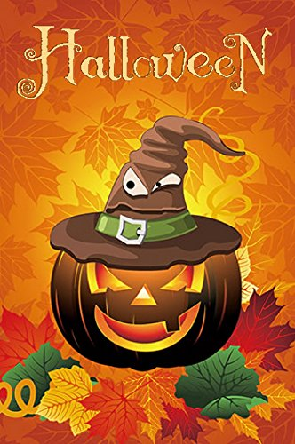 Funny Halloween Images (Halloween Garden Flag (Jack O lantern w/ Hat) double sided reads correctly on both sides 12 x 18)