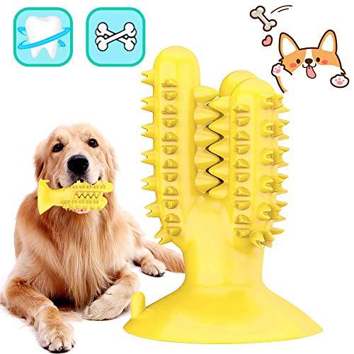 🥇 Cepillo De Dientes para Perros