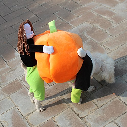 iiniim Pet Dog Cat Carrying Pumpkin Halloween Costume Fancy Party Jacket Apparel (L) (Pumpkin Outfit For Dogs)