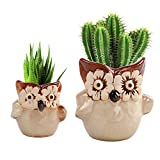 LUCKEGO 2.75&3.75 Inch Ceramic Succulent Pot,Cute Big&Mini Owl Combination,Owl Shaped Cactus Pot Planter,Flower Pot,Pottery Bonsai Pot,Ceramic Flowing Glaze Base Serial Set,Pot with A Hole(2 in Set)