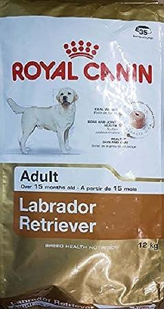 Royal Canin - 35298 - Nourriture pour labrador - 12 kg 02RCL