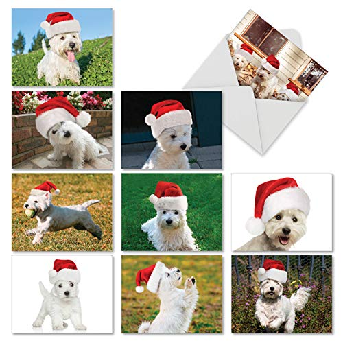 (Wonderful Westies - 10 Adorable Puppy Dog Merry Christmas Cards with Envelopes (4 x 5.12 Inch) - Assortment of Boxed Xmas Note Card Greetings - Cute Pets, Animals in Santa Hats AM6324XSG-B1x10)