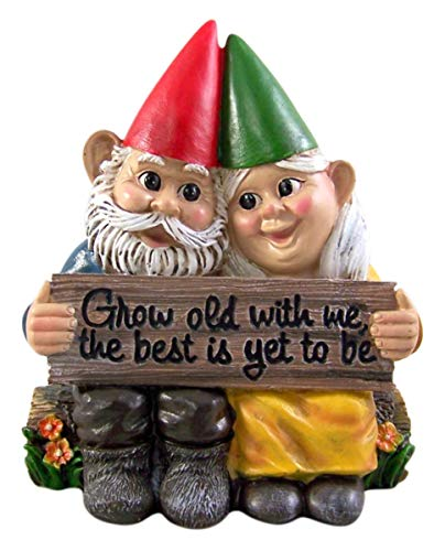 DWK Grow Old with Me Gnome Couple Small Garden Figurine, 6 Inch