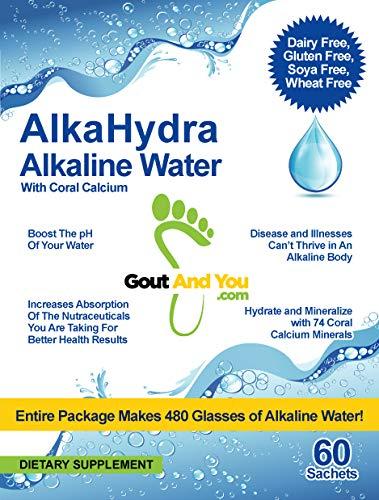AlkaHydra Alkaline Water - 60 Sachets - 480 Glasses