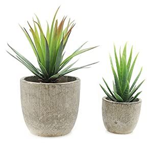 Velener Mini Home Decoration Artificial Plants Aloe with Pots (Green, Set of 2) 7