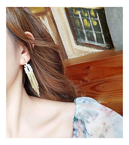 KristLand - S925 Silver Plated Sleek Chain Tassel Drop Earrings Long Fringe Dangle Simple Style Flat Chain with Crystal ()