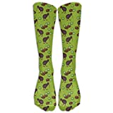 Unisex Kiwi Birds And Kiwi Fruits Below Knee Socks Tube Stockings Mid Calf Boot Socks Long Crew Socks