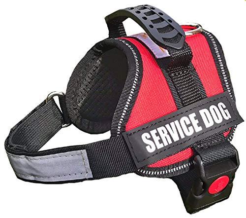 service dog extra small - 1