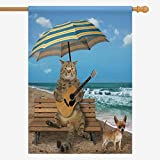 Cheap InterestPrint House Flag Funny Cat with a Guitar and His Dog on Beach Home House Banner Decorative Flags Best for Party Yard Home Outdoor Decor Oxford Cloth 28″ x 40″ (Without Flagpole)
