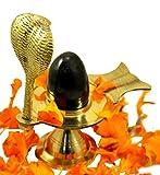 IndianStore4All Shaligram Shiva Ling Lingam