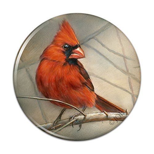 - Cardinal Red Bird on Tree Branch Compact Pocket Purse Hand Cosmetic Makeup Mirror - 3