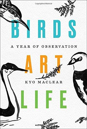 Boss Birds (Birds Art Life: A Year of Observation)