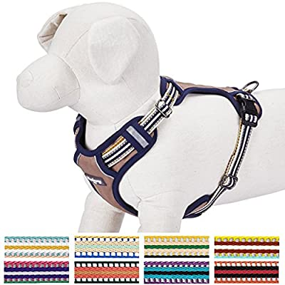 Blueberry Pet Soft & Comfortable 3M Reflective Multi-colored Stripe Mesh Padded Dog Harness Vest, Matching Collar & Leash Available Separately