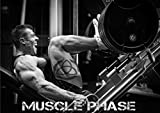 * ANABOLIC * TESTOSTERONE FURNACE - Testosterone Booster For Muscle Growth - Testosterone Booster For Men Sex – Testosterone For Women - Testosterone Pills - Testosterone Supplements - 51MVEK0AT9L - * ANABOLIC * TESTOSTERONE FURNACE – Testosterone Booster For Muscle Growth – Testosterone Booster For Men Sex – Testosterone For Women – Testosterone Pills – Testosterone Supplements
