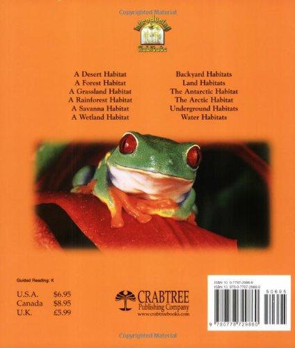 A Rainforest Habitat (Paperback) (Introducing Habitats): Molly ...