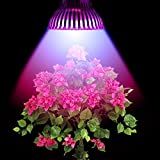Cheap LVJING® 30w E27 Led Plant Grow Light Lamp 15 Led Red and Blue for Hydroponic Plants Flowers Vegetables Greenhouse Hydroponic Lighting 85-265V