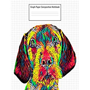 Graph Paper Composition Notebook: Quad Ruled 5 Squares Per Inch, 110 Pages, Wirehaired Vizsla Dog Cover, 8.5 x 11 inches / 21.59 x 27.94 cm 31