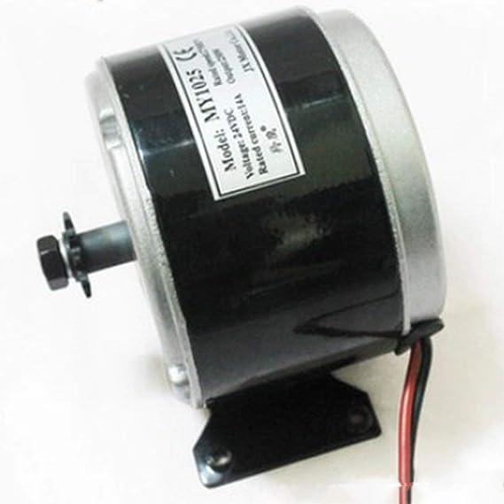 CHANNIKO-ES 24 V 250 W de Alta Velocidad Cepillado Motor ...