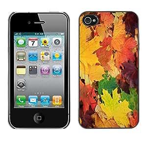 Cubierta de la caja de protección la piel dura para el Apple iPhone 4 / 4S - leaves maple golden yellow
